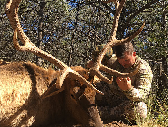 new mexico elk outfitter